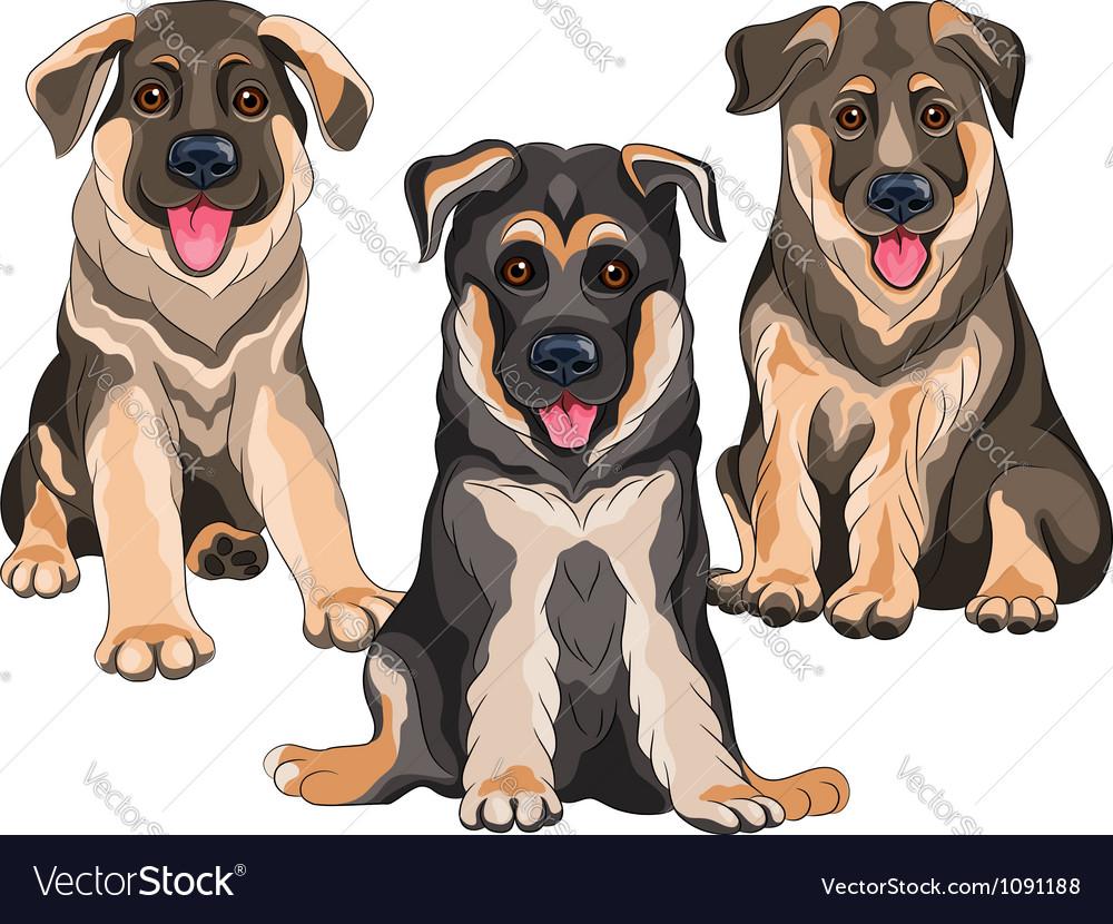 Smiling puppies dog german shepherd vector | Price: 3 Credit (USD $3)