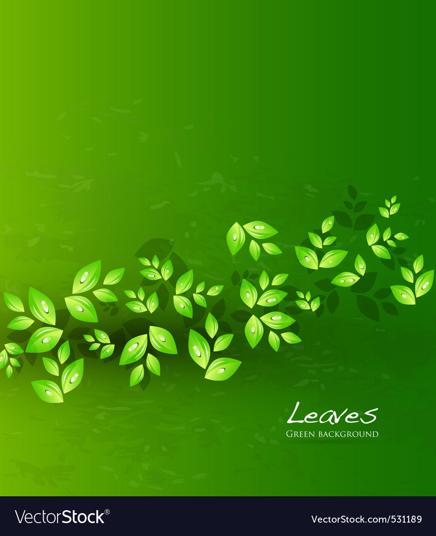 Modern nature vector | Price: 1 Credit (USD $1)