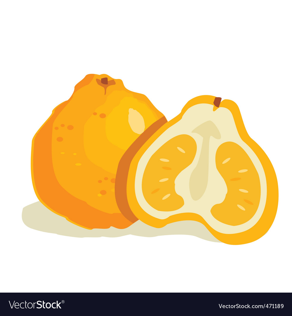 Ugly fruit vector | Price: 1 Credit (USD $1)