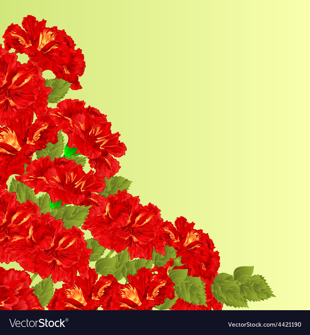 Flowering shrub red hibiscus floral background vector | Price: 1 Credit (USD $1)