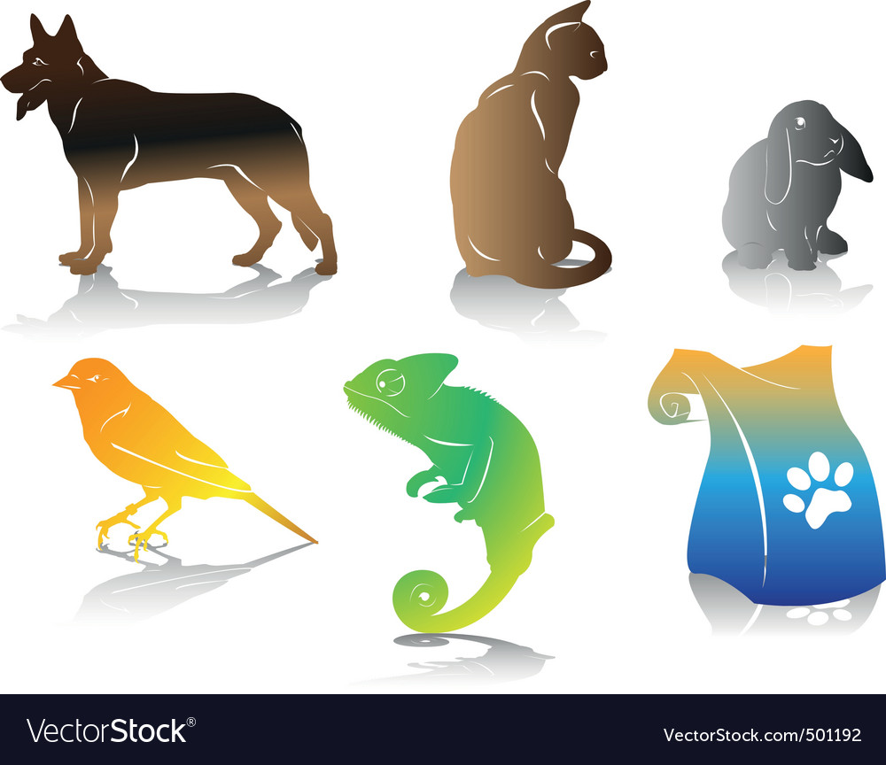 Color pet vector | Price: 1 Credit (USD $1)