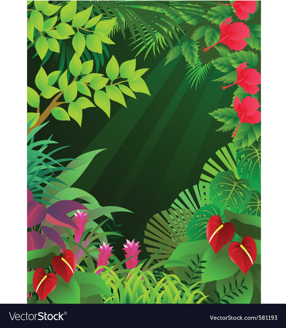 Tropical forest vector | Price: 1 Credit (USD $1)
