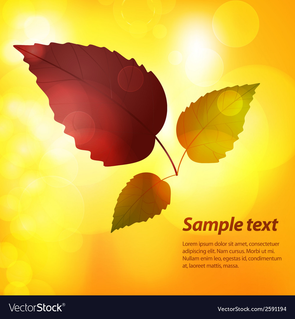 Autumn leaf background with sample text vector | Price: 1 Credit (USD $1)