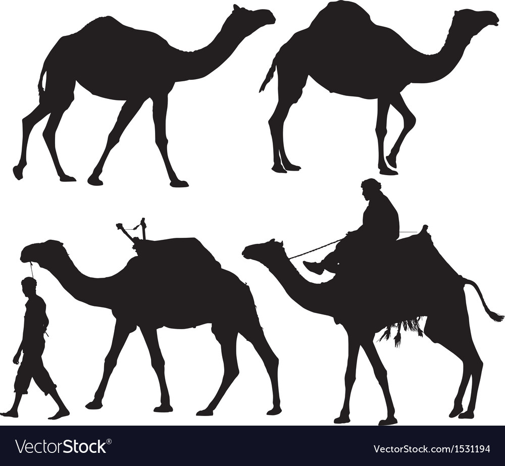 Camel silhouette vector | Price: 1 Credit (USD $1)