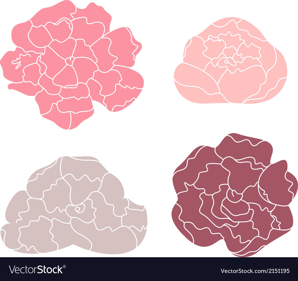 Peony pastel flower set isolated on white vector | Price: 1 Credit (USD $1)
