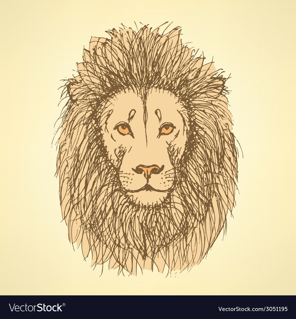 Sketch cute lion in vintage style vector | Price: 1 Credit (USD $1)