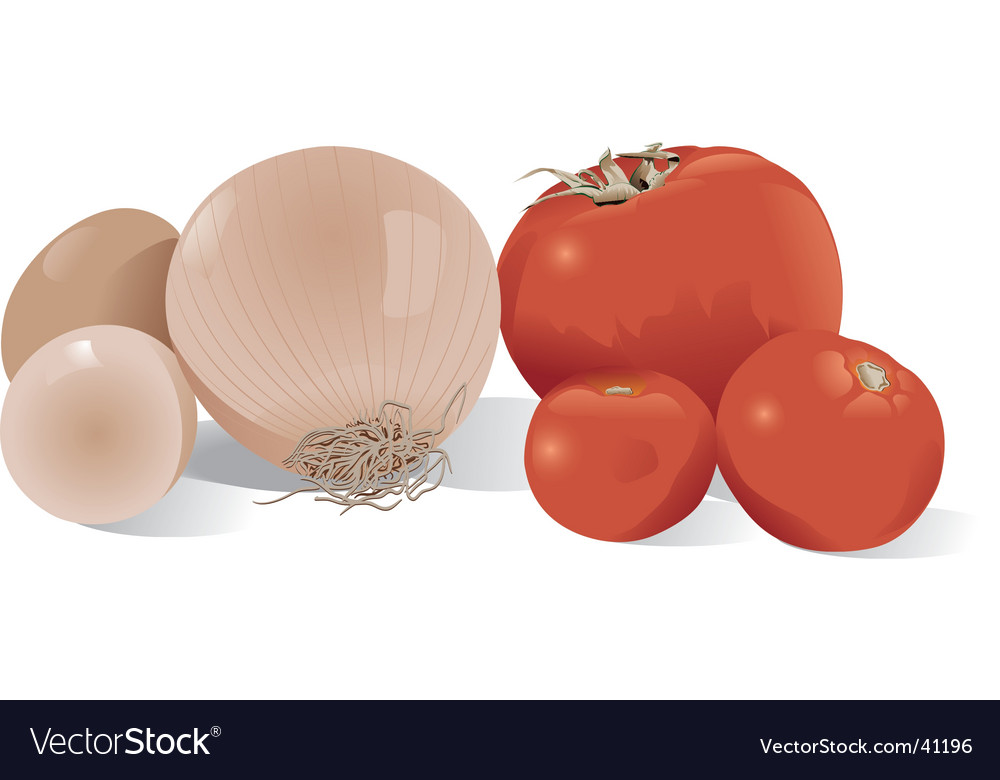 Onion tomatoes and eggs vector   Price: 1 Credit (USD $1)