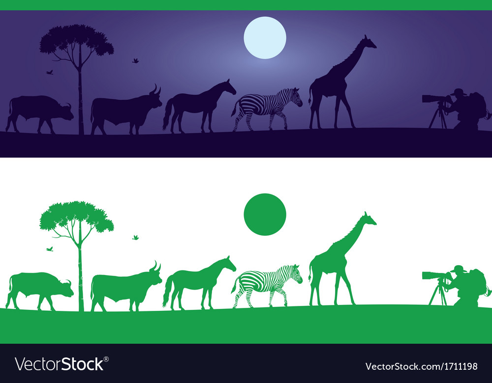 Beautiful wild animals wall decal vector | Price: 1 Credit (USD $1)