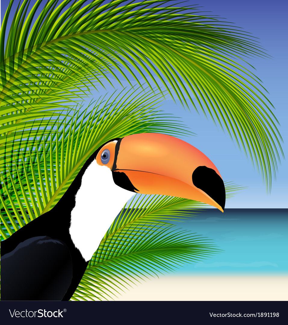 Exotic trip card with palm tree and toucan vector | Price: 1 Credit (USD $1)