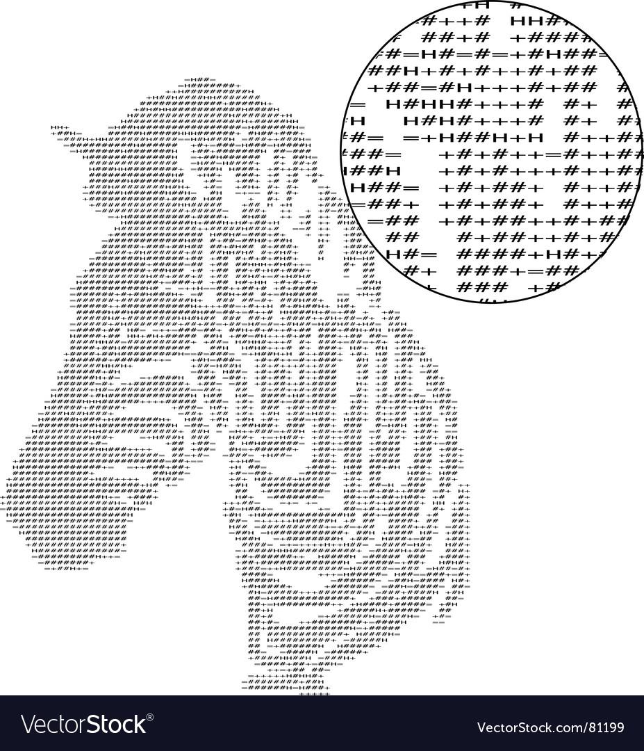 Text zebra vector