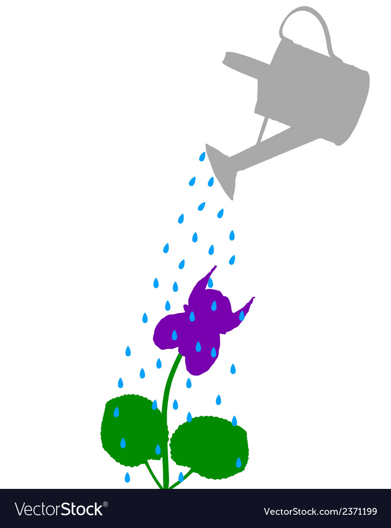 Watering pot and flower vector | Price: 1 Credit (USD $1)