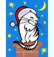 Cat in a santa hat vector