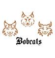 Bobcats and lynxs vector