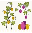 Grape vines wineglasses and decorative elements vector