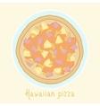 Hawaiian pizza vector