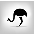 The black stylized silhouette of an ostrich vector