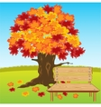 Bench under tree vector