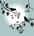 Birds on a branch vector