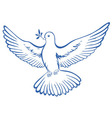 Pigeon dove icon vector