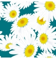 Seamless texture chamomile flowers eps 10 vector