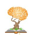 Brain tree on book vector