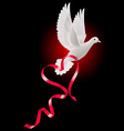 White dove with red ribbon vector