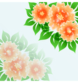 Beautiful flower blue background vector
