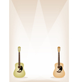 Two beautiful guitar on brown stage background vector