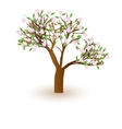 Isolated beautiful cherry blossom tree vector