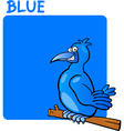Color blue and bird cartoon vector