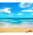 Beach and pebbles vector