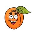 Colorful orange apricot fruit vector