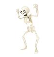 Sceleton vector