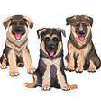 Smiling puppies dog german shepherd vector