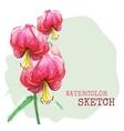 Watercolor painted flowers vector