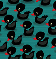 Black baby ducks vector