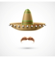 Sombrero and mustache vector