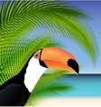Exotic trip card with palm tree and toucan vector