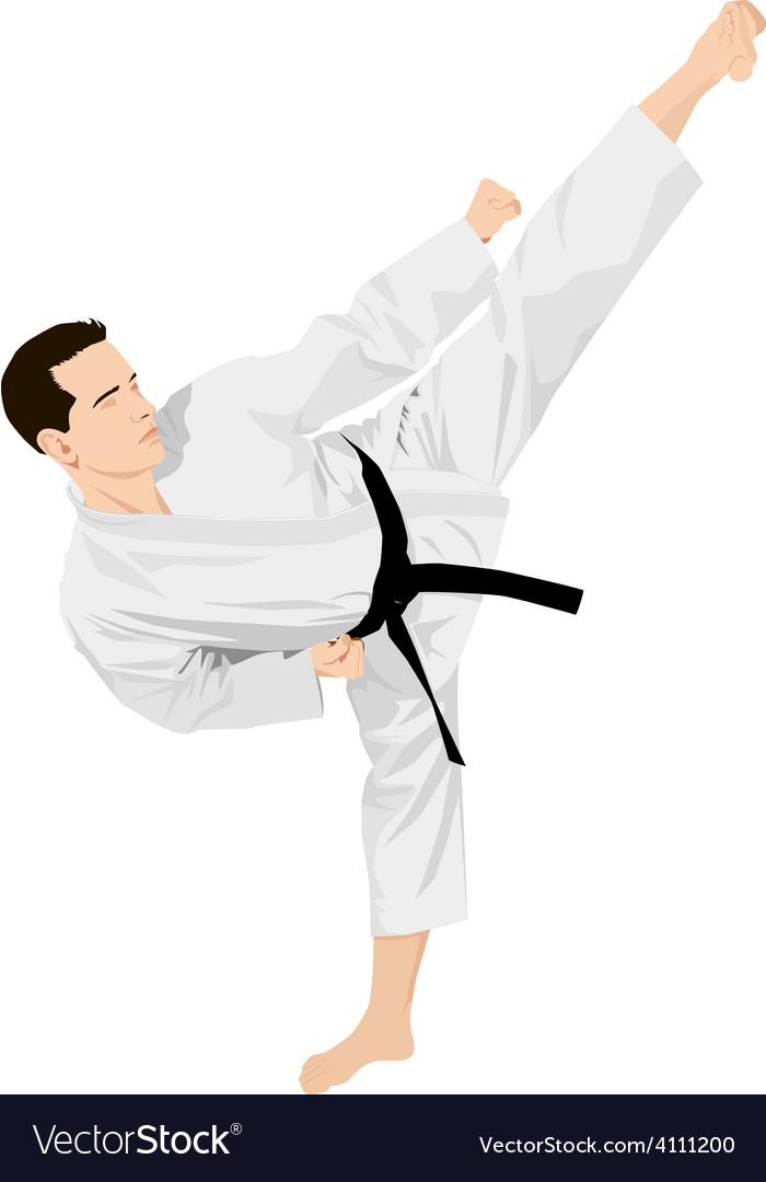 Karateka vector   Price: 1 Credit (USD $1)
