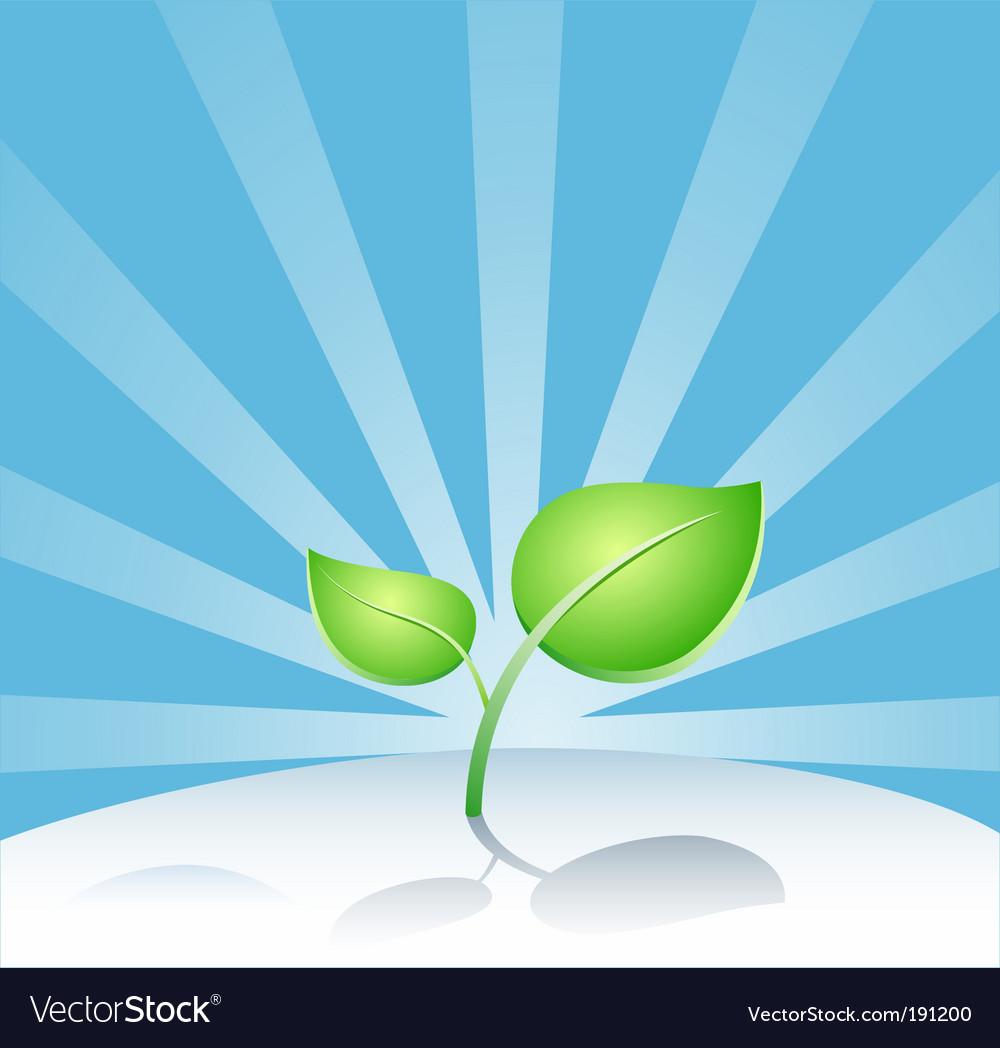 Leaf vector   Price: 1 Credit (USD $1)