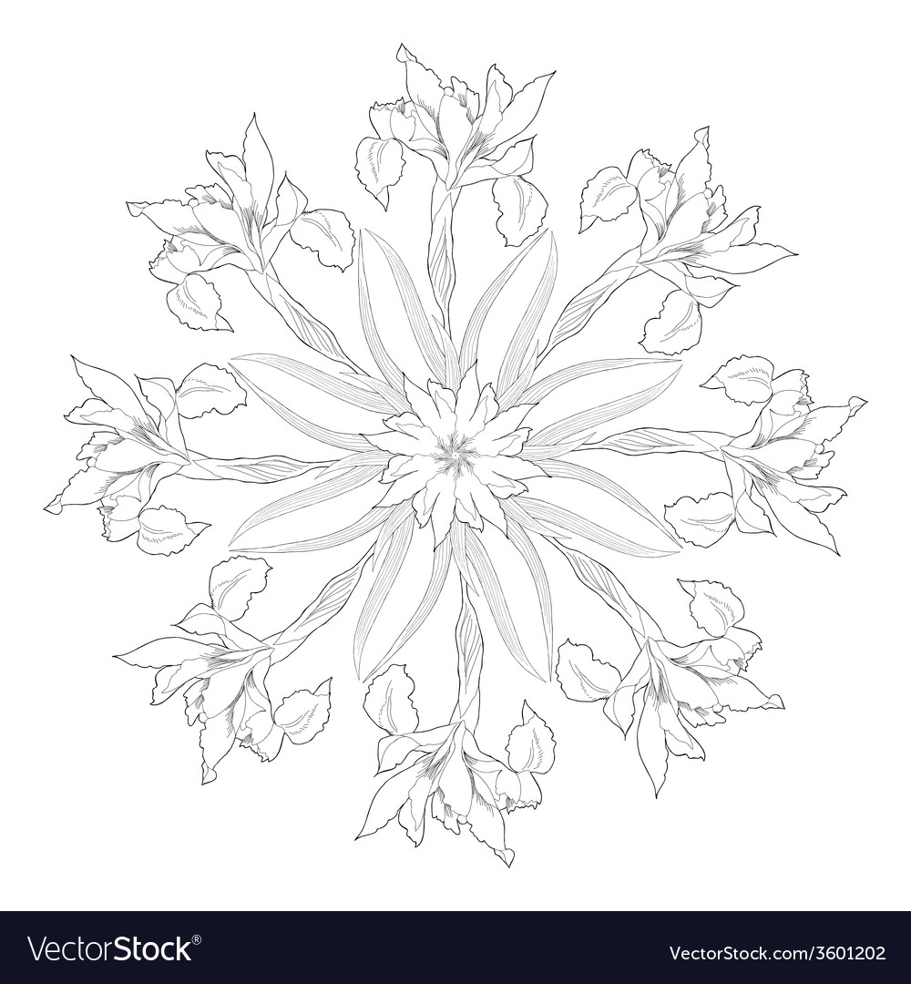Ornamental round with irises vector | Price: 1 Credit (USD $1)