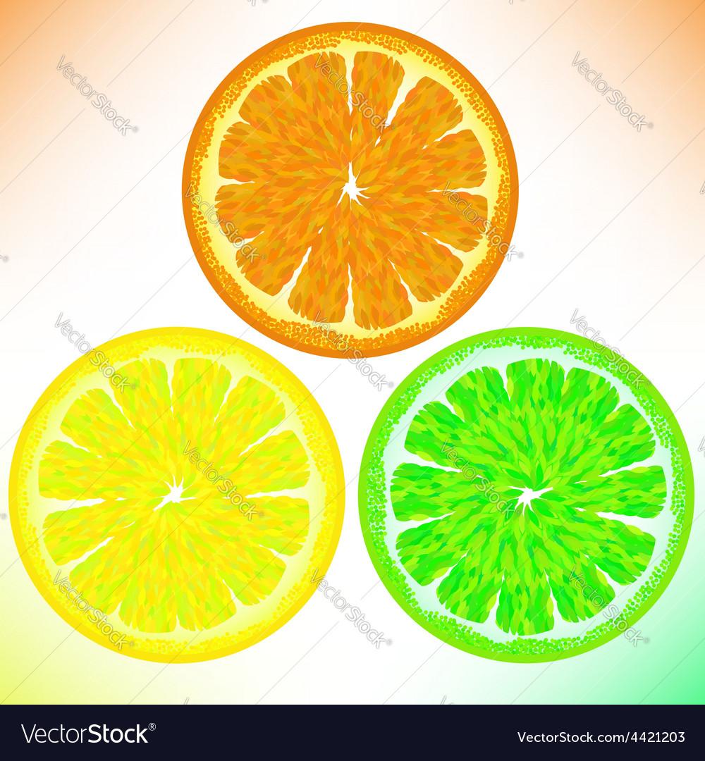Orange lemon lime vector | Price: 1 Credit (USD $1)
