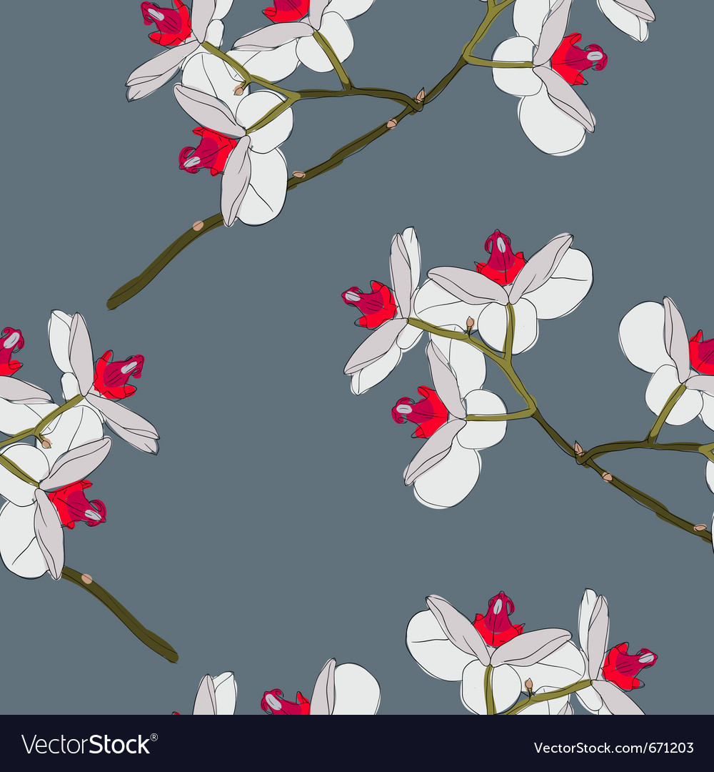 Orchid flowers seamless wallpaper vector | Price: 1 Credit (USD $1)