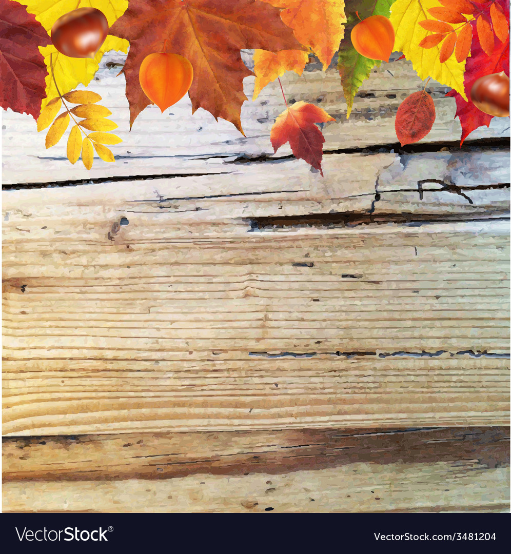 Autumn border with wooden background vector | Price: 1 Credit (USD $1)