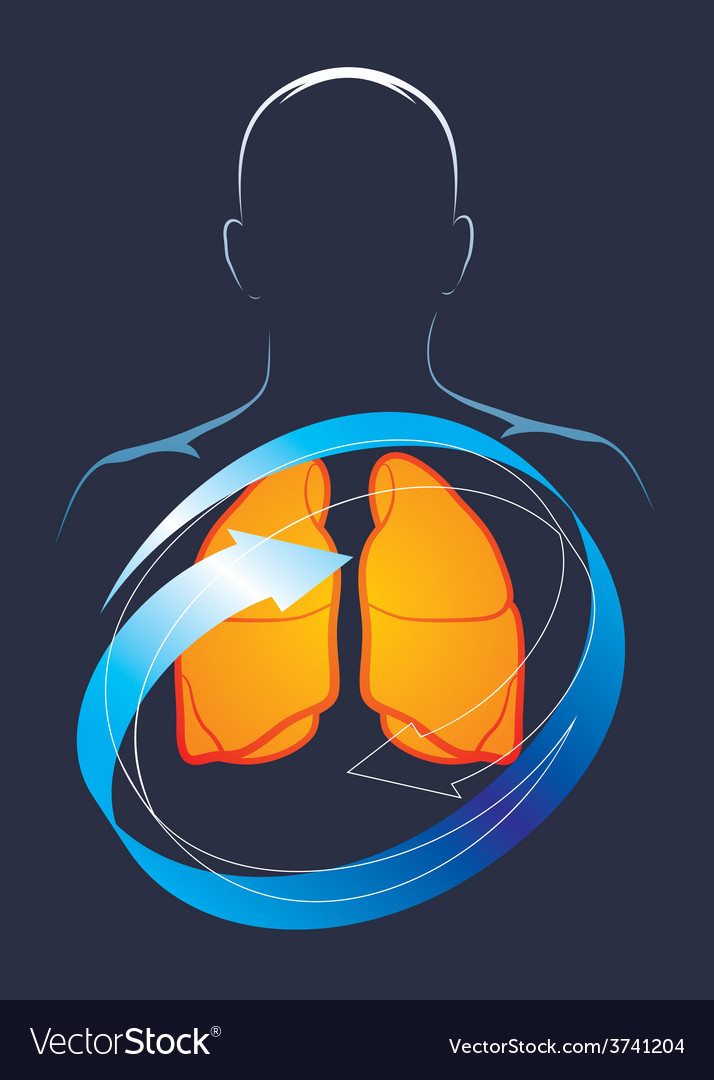 Health of their lungs vector | Price: 1 Credit (USD $1)