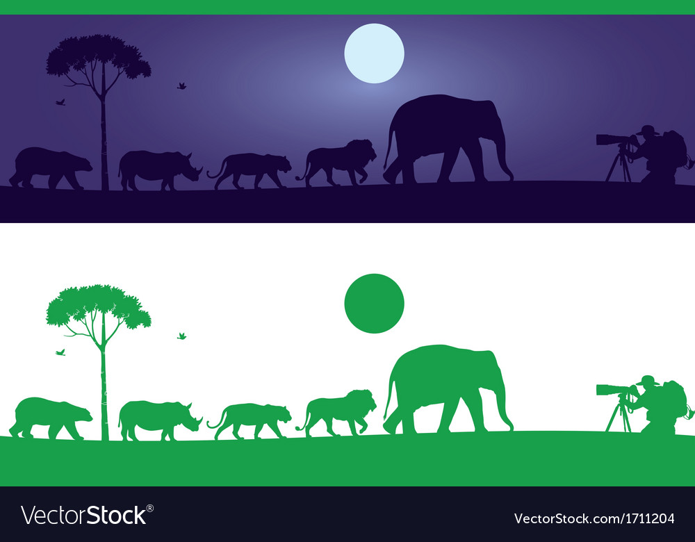 Wild animals wall decal vector | Price: 1 Credit (USD $1)