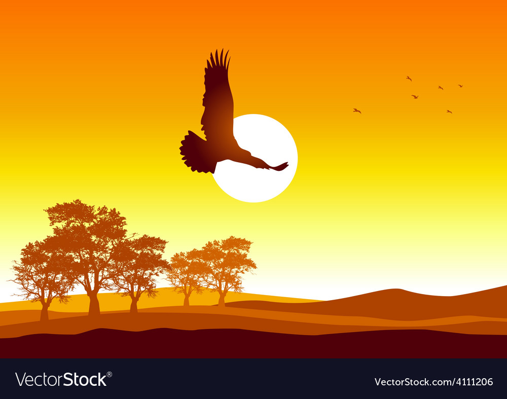 Soaring eagle vector | Price: 1 Credit (USD $1)