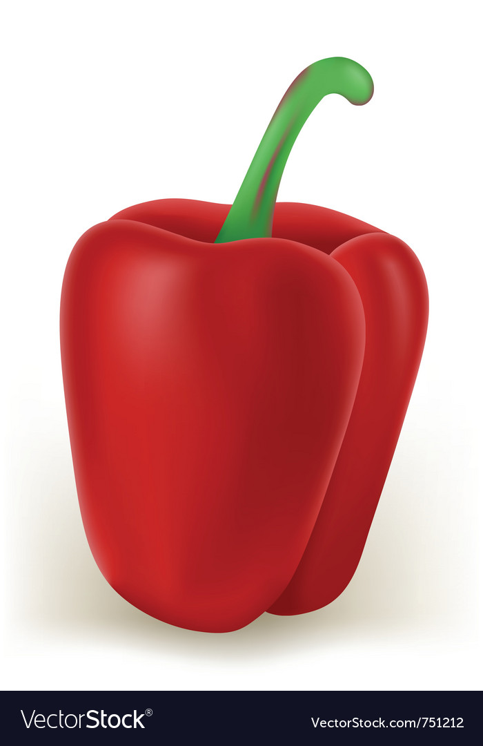 Sweet pepper vector | Price: 1 Credit (USD $1)