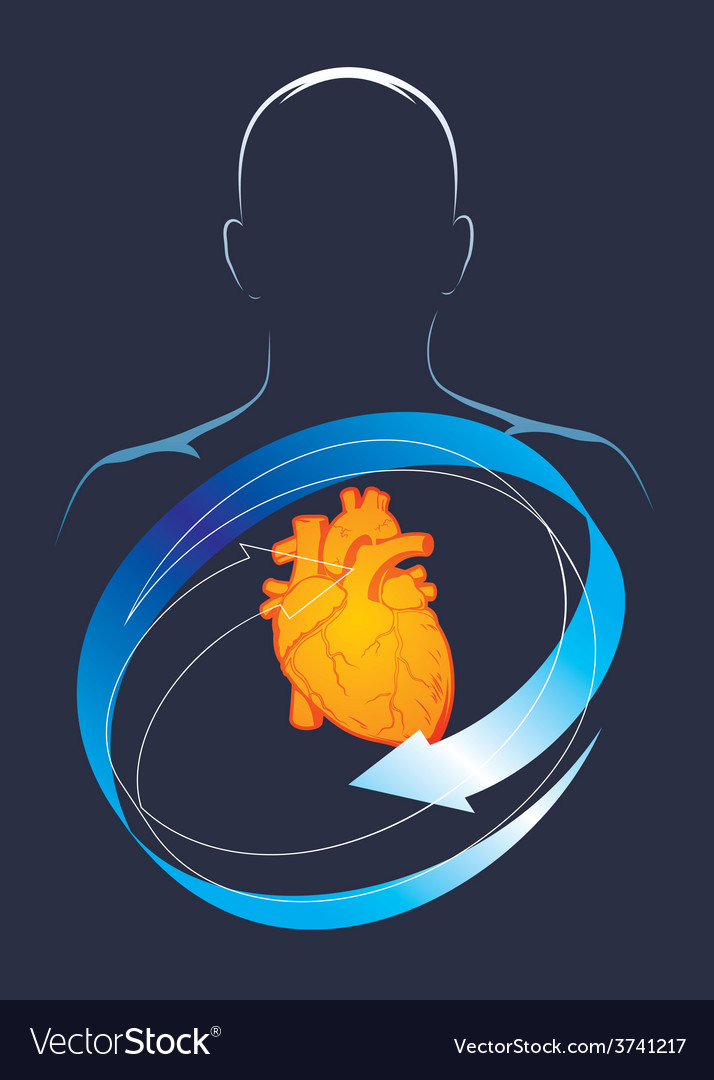 Health of their hart vector | Price: 1 Credit (USD $1)