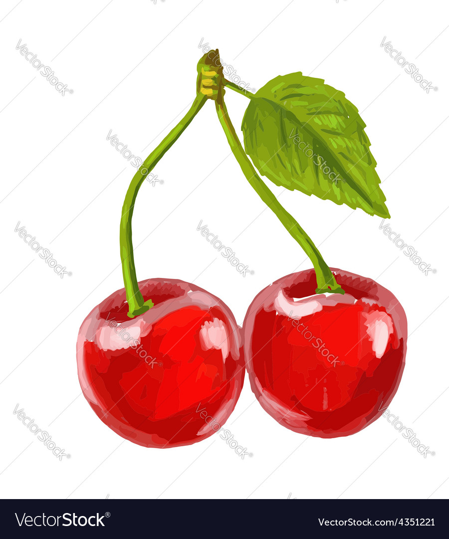 Picture of red cherry vector   Price: 1 Credit (USD $1)